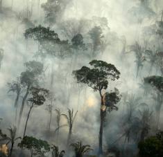 """Investigadores hallaron evidencia de que la Amazonía brasileña """"ahora es un emisor neto"""" del gas que incide en el calentamiento global. Foto: Bruno Kelly / Reuters"""
