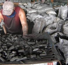 El carbón vegetal será uno de los renglones exportables en los cuales mostraron interés los alemanes.