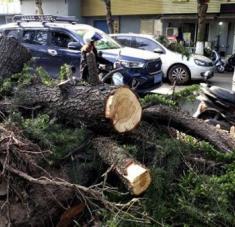 Las autoridades de la ciudad de Nantong continúan con las labores de rescate, desescombro y restauración del suministro eléctrico. Foto: Xinhua