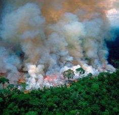 En lo que va de año, se detectaron en el humedal de Pantanal un total de 4.203 focos de incendios. Foto: Pulso