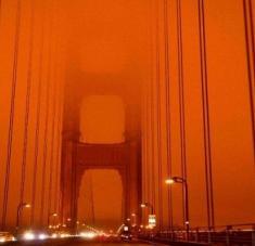 Aproximadamente 3.200 bomberos luchan contra los incendios que azotan diversas zonas de California. Foto: La Jornada