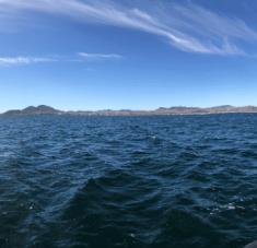 Para determinar en qué estado ambiental se hallan los organismos marinos, los científicos españoles seleccionaron seis zonas de muestreo en distintas áreas del mar Catalano-Balear. Foto: @IEO_Malaga