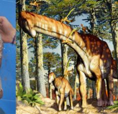 """""""Hasta ahora, no se conocían estos gigantescos cuadrúpedos con una antigüedad superior a los 120 millones de años"""", asegura investigadores de la Univerisdad de La Matanza. Foto: Agencia CTyS"""