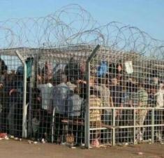 La ocupación israelí no ha aminorado su intensidad en el medio de la pandemia de la Covid-19. Foto: Twitter: Palestina Librea