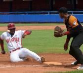 Los indómitos luchan por retornar a su condición de históricos de nuestros clásicos beisboleros. Foto: Tomada del periódico Sierra Maestra.